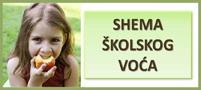 slika_shema_skolsko_vo__e.jpg