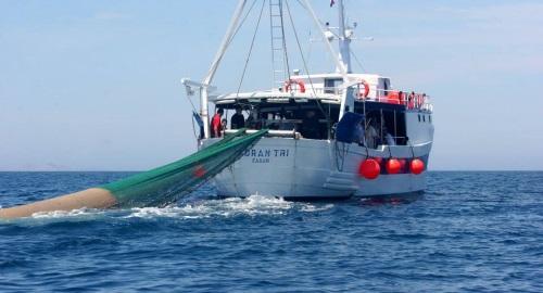 upoznavanje sa morskim savjetima